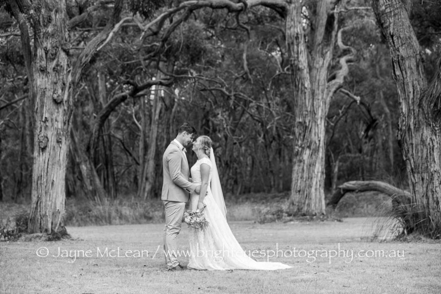tanglewood estate, tanglewood estate wedding, tangle wood estate wedding photos, tanglewood estate photos, Mornington peninsula wedding photographer, mornington peninsula wedding photos